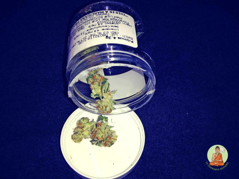 Las Vegas ReLeaf - Primus Bottle_Weed