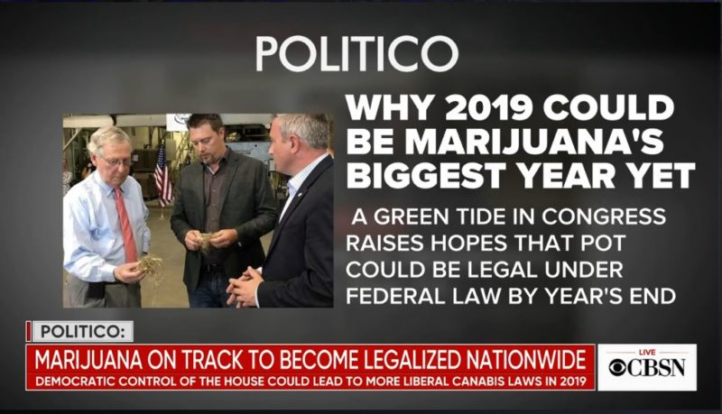 Marijuana is on Track to be Legalized by the end of the Year