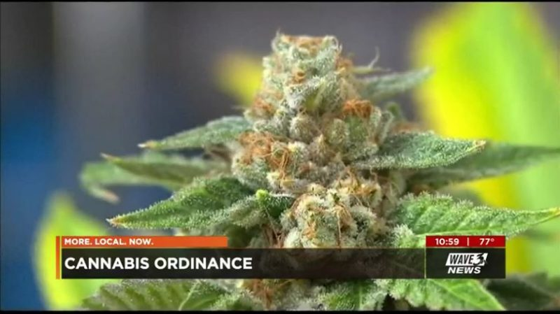 Marijuana advocates applaud proposed Metro ordinance