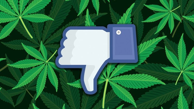 Exclusive: Facebook will not allow marijuana sales on its platform