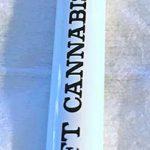 Bruce Banner E- Joint
