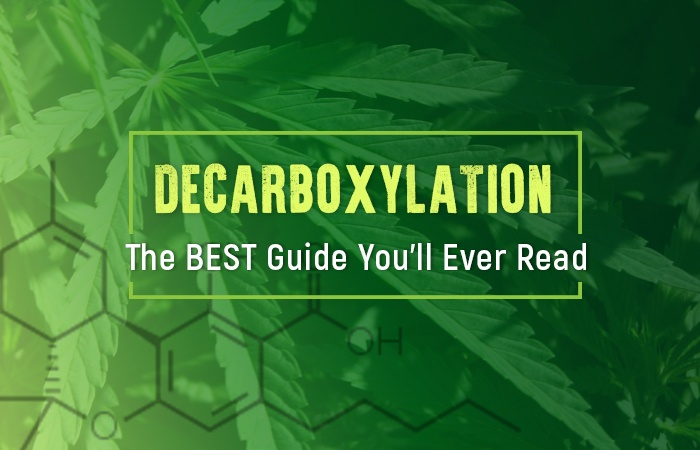 Decarboxylation: The Best Guide You'll Ever Read