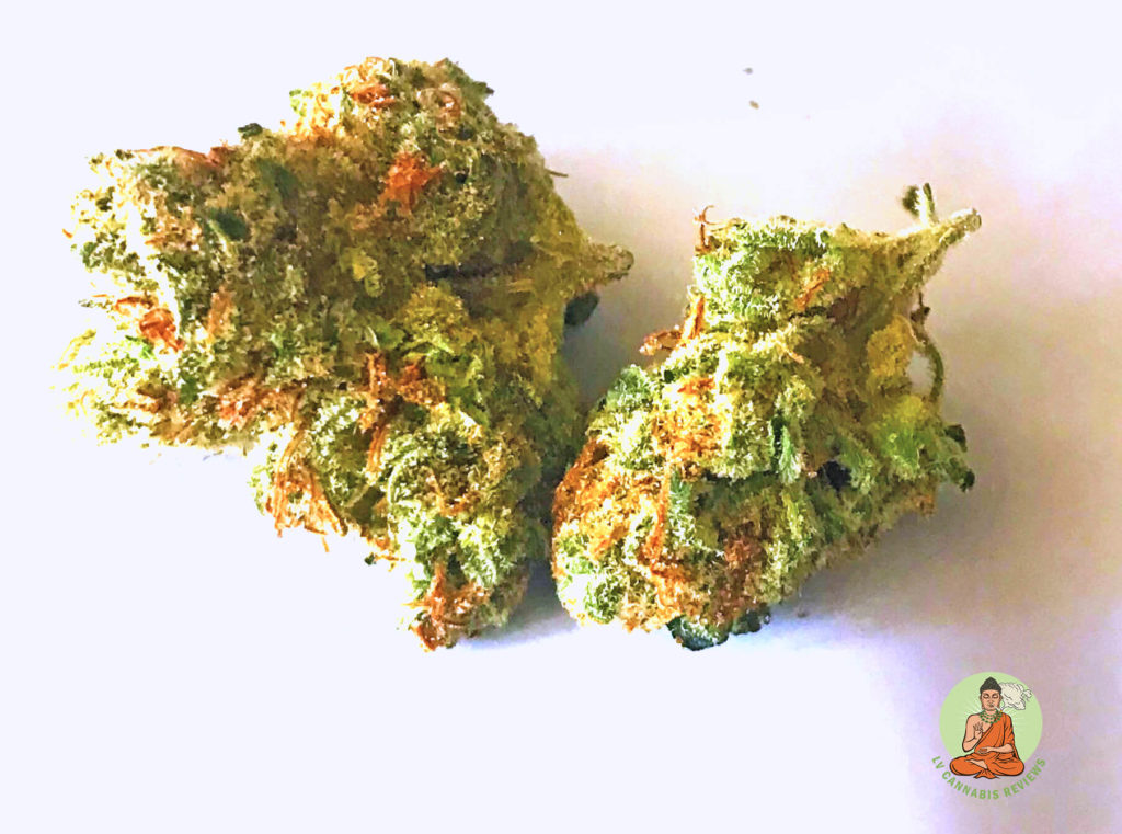 Drying and Curing Cannabis The Art of Enhancing Effect and Flavor