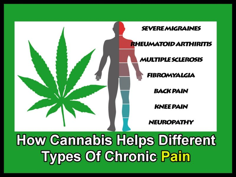 How Cannabis Helps Different Types Of Chronic Pain