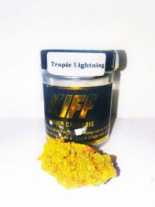 Blackjack Collective - Tropic Lightning - Hybrid