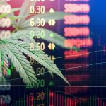 How to Invest in Cannabis: A Guide to Cashing in On The Green Rush