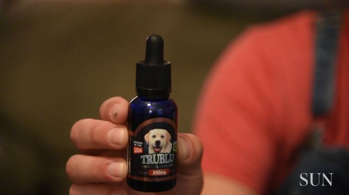 As cannabis market booms, Baltimore pet owners indulge dogs, cats with CBD-infused 'treats'