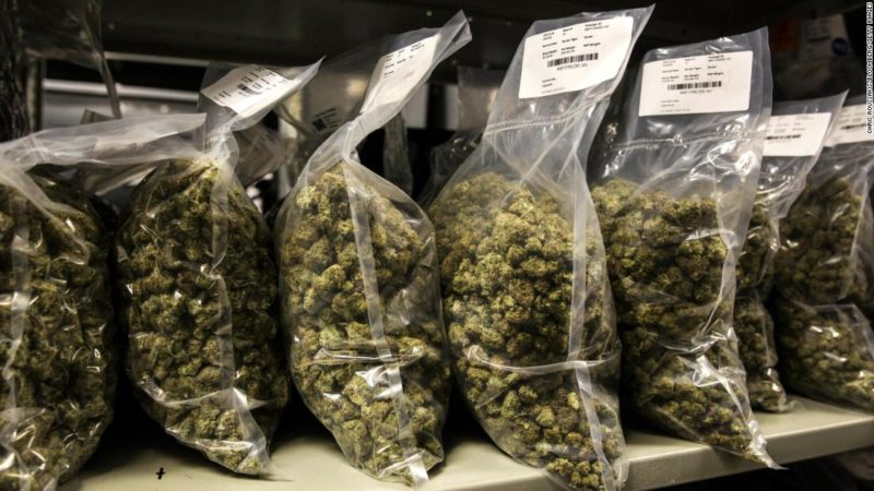 Marijuana legalization could help offset opioid epidemic, studies find