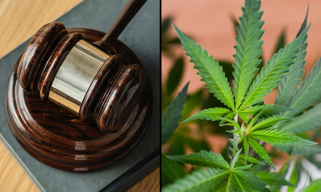 Federal Court Orders DEA To 'Promptly' Consider Marijuana