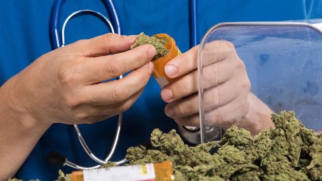 School Nurses Can Now Give Kids Medical Marijuana in Colorado