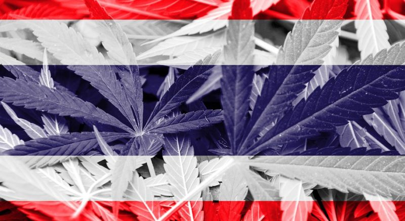 Thailand Will Now Turn Confiscated Weed into Cannabis Medicine