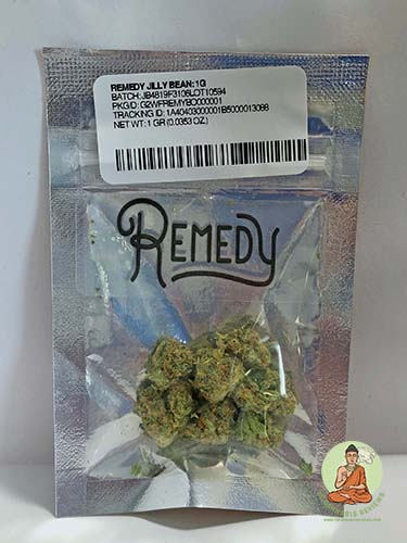 Remedy Jilly Bean