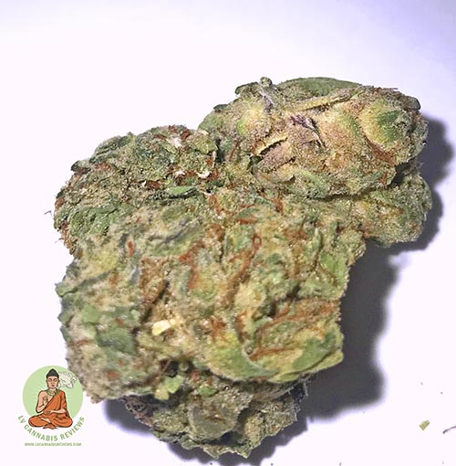 Flower One White Label Zookies Reviews October 2019 Oasis