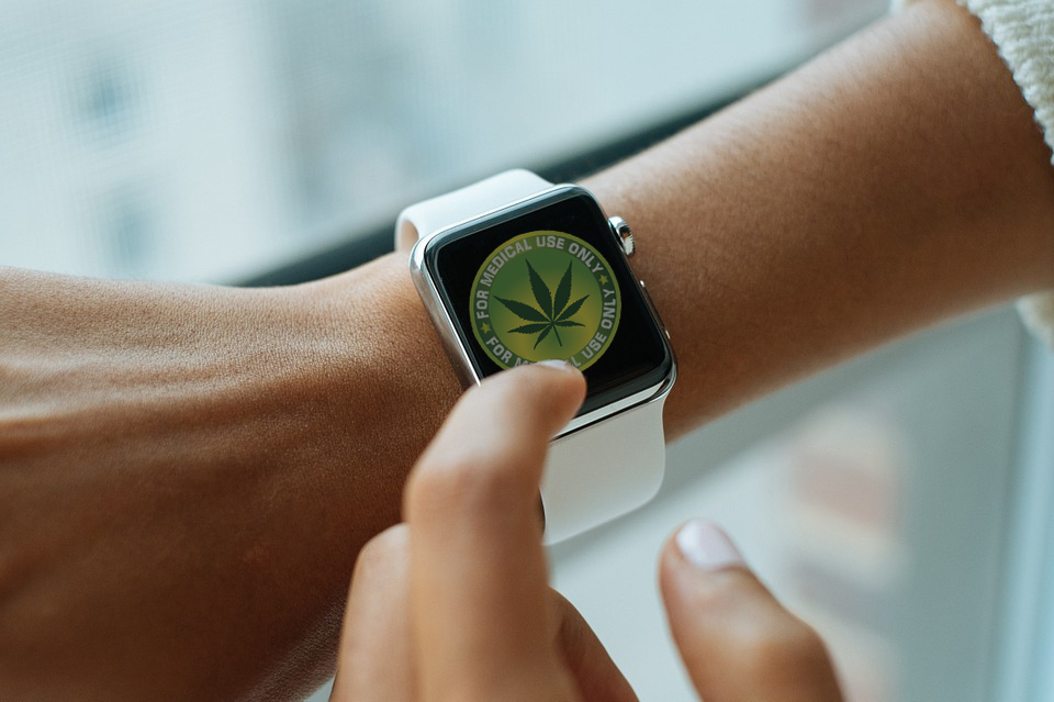 How Long Does It Take For Marijuana To Get Out Of Your System?