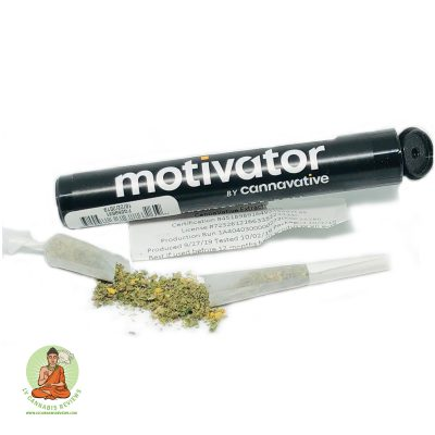 Jelly Punch Motivator Infused Pre-roll