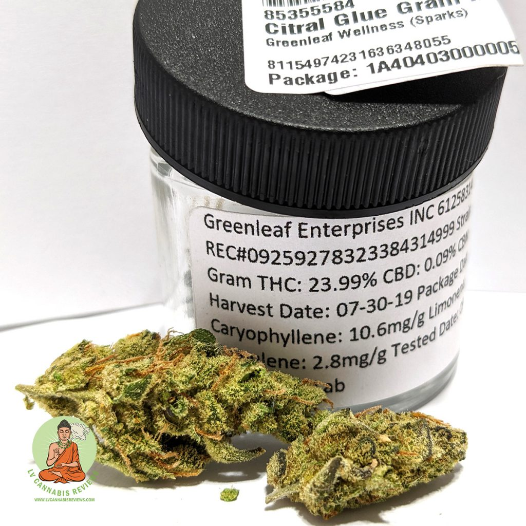 Mojave Greenleaf Enterprises Citral Glue Review November 2019 Greenleaf Wellness Dispensary