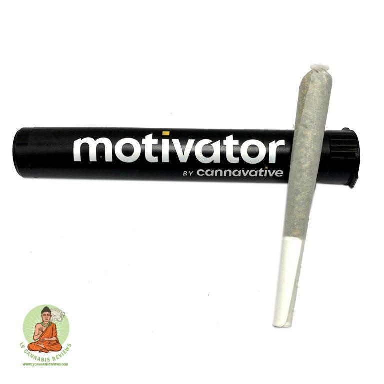 Cannavative Sour Diesel Motivator Review MedMen Dispensary January 2020