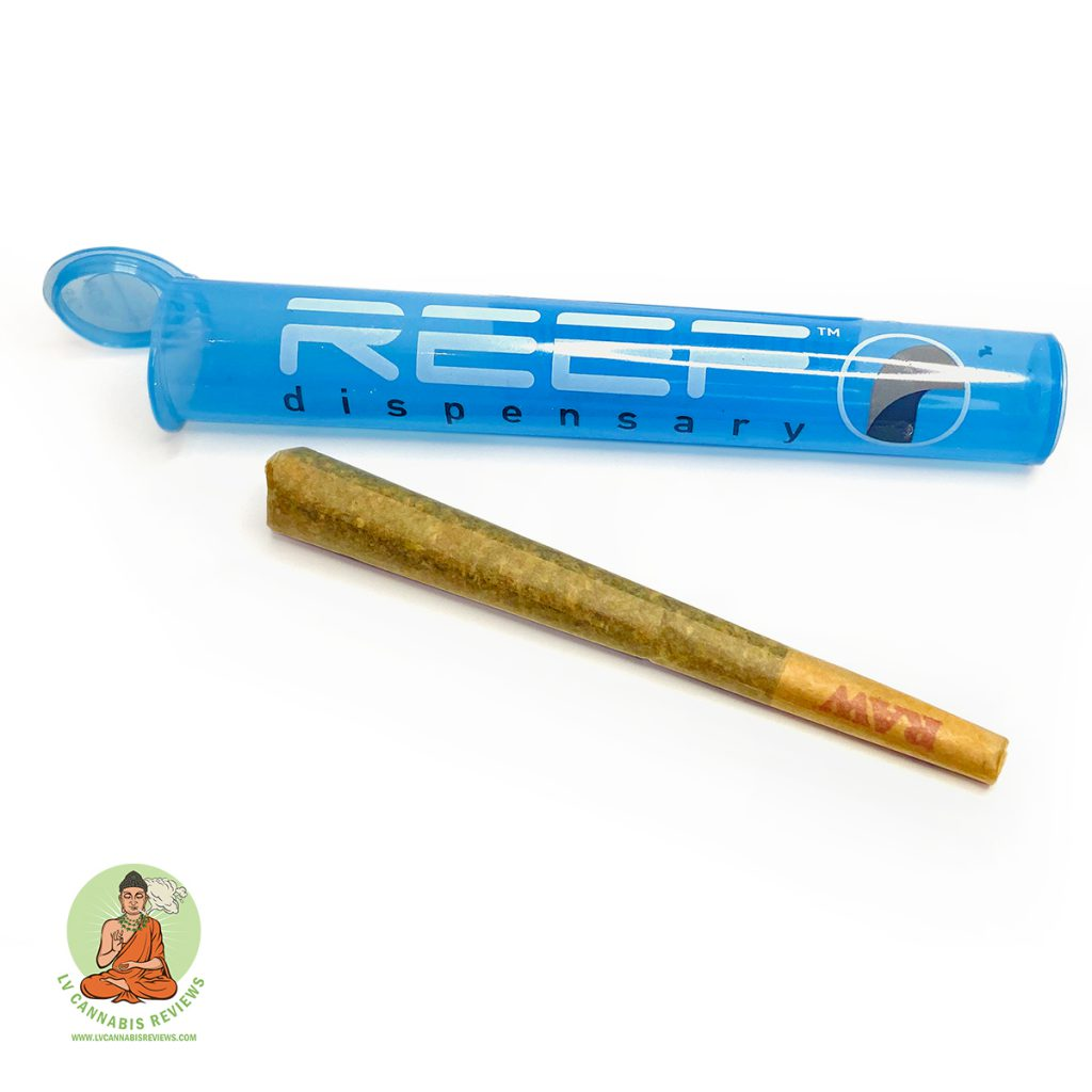 Sherbert Pre-Roll Reef Dispensary