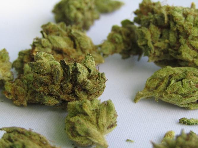 Everything-You-Need-To-Know-About-Microdosing-Marijuana3