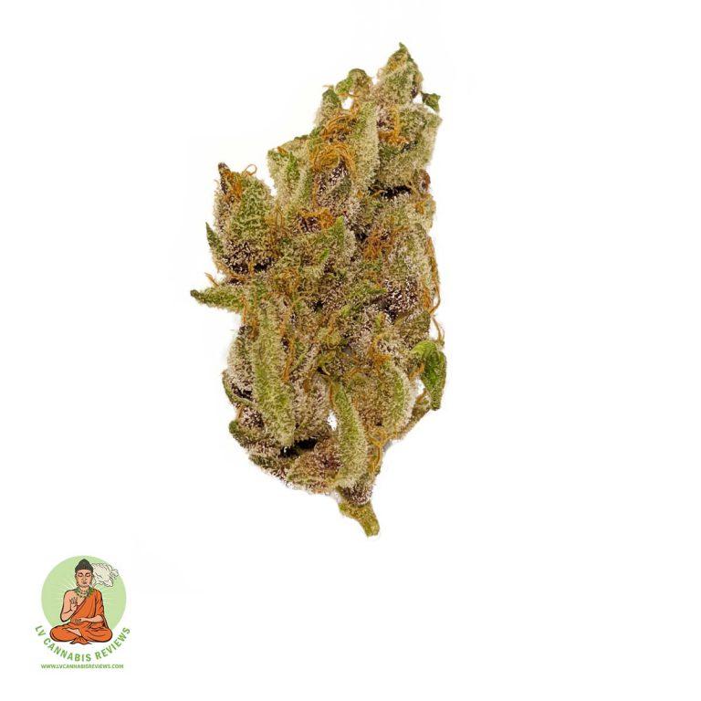Tropicana-Cookies2