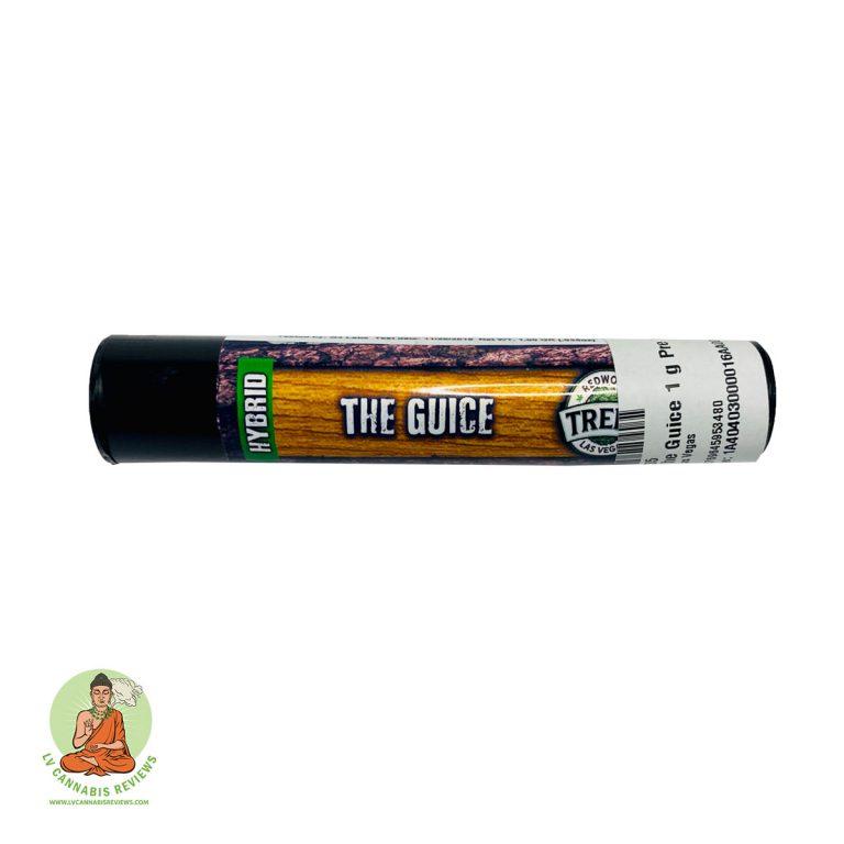 The-Guice-Preroll-1